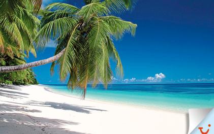 Най-хубавите плажове в света